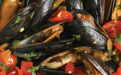 Chilean Mussels – Halfshell and Meat